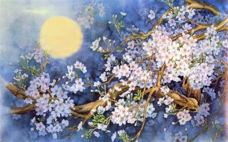 Cherry blossoms - painting, flowers, spring, moon