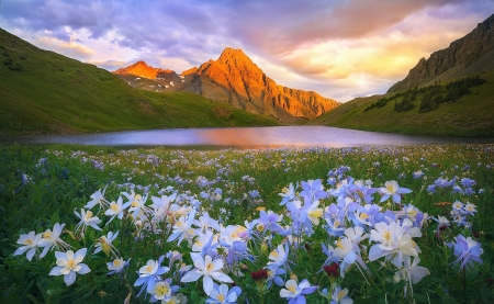 Lake - mountain, flowers, spring, lake