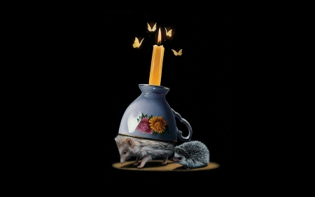 :) - fantasy, hedgehog, butterfly, black, yellow, jacub gagnon, night, candle, luminos, cup
