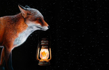 Fox - art, lantern, luminos, black, iarna, animal, winter, vulpe, fantasy, fox, jacub gagnon, night, light