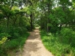 Nature Trail