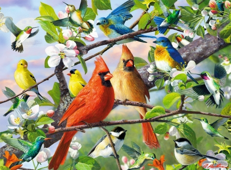 Sitting pretty - spring, blooming, branches, art, pretty, birds, beautiful, cardinals, sit, tree, gathering, blossoms