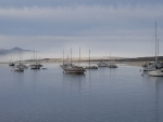 Fog @ Morro Bay, California