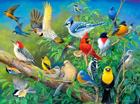 Birds eye view - birds, fun, spring, pretty, art, forest, colorful, view, jpy, eye, beautiful, gathering
