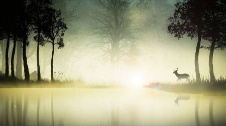 In the silent of dawn - forest, foggy, lake, deer, fog, mist, wilderness, wallpaper, wild, wildlife, misty, wood, scene, landscape, animals, wild animals