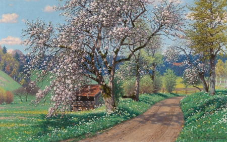 Morning in the Chiemgau - spring, flowering, trees, road, rural