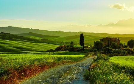 Tuscany - roads, photography, grasslands, green, Italy, fields, nature