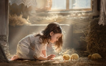 Little Girl and Ducklings