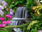 Small garden waterfall