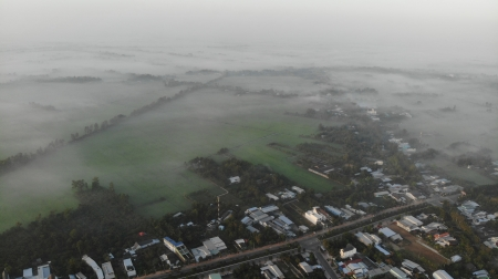 The field is engulfed in fog - mien tay co gi, canh dong, mien tay, huynh hieu travel, dong lua, field, suong mu