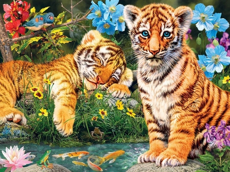 A Watchful Eye - pond, fishes, painting, tigers, flowers, cubs, sleeping, watching