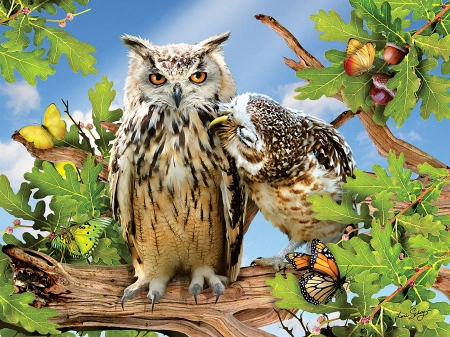 Owl always love you - owls, art, tree, leaves, digital, birds, butterflies