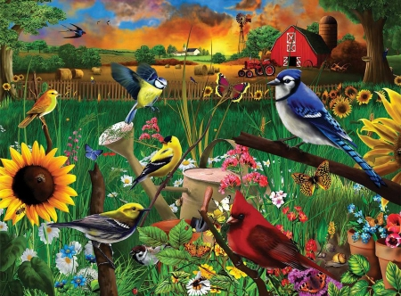 Sunflower Birds - tractor, chickadee, digital, bluejay, sunset, goldfinch, cardinal, barn