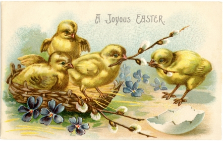 Happy Easter! - pasari, pui, yellow, easter, chick, vintage, card, bird, flower, blue