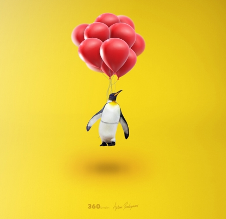 He can fly - red, artem pozdnyakov, balloon, bird, penguin, yellow, funny, creative, fantasy