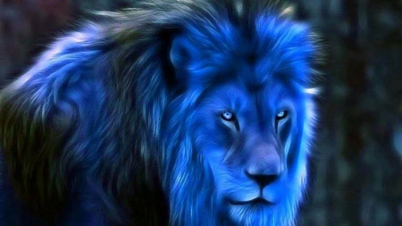 Blue Lion - fantasy, big cat, lion, blue