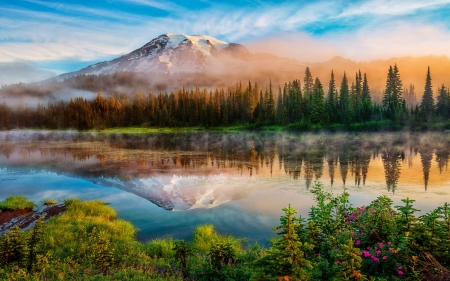Mount Rainier And Bench Lake National Park, Washington - dusk, water, morning, reflections, trees