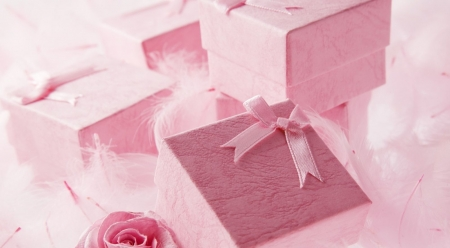Pink presents - photography, pink, softness, still life, wallpaper, gift
