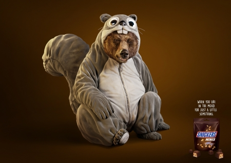 :D - fantasy, add, snickers, urs, bear, commercial, funny, animal