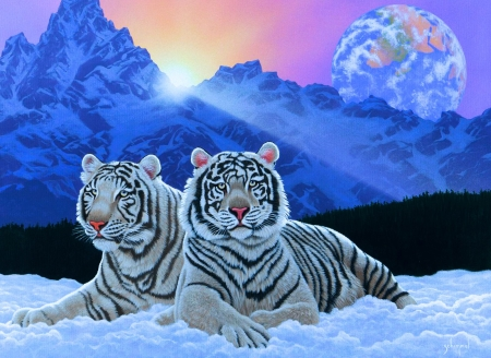 Sharing The Sunrise - planet, snow, mountains, painting, tigers, artwork