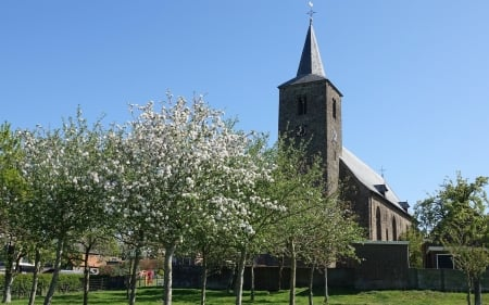 Church in Wilsum, Germany - spring, Germany, trees, church, Wilsum