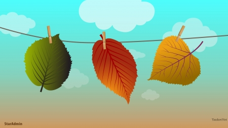 leaves - windows wallpaper, leaves, though, leav