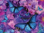 🦋🌸🦋  Blue butterflies on a canvas of pink orchids🦋🌸🦋
