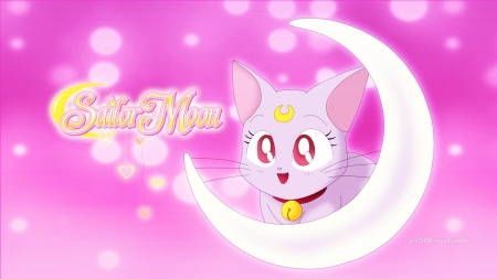 sailor moon diana - cute, sailor moon, anime sailor moon, cat, lovely