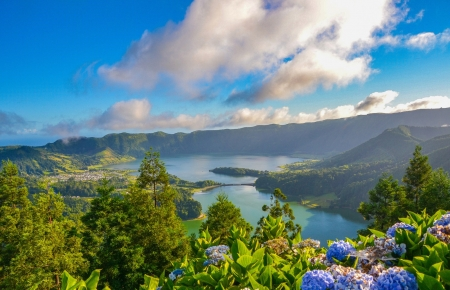 Lagoa das Sete Cidades - hydrangea, Sao Miguel island, mountains, Portugal, Azores, volcano, lagoon of the seven cities, lake