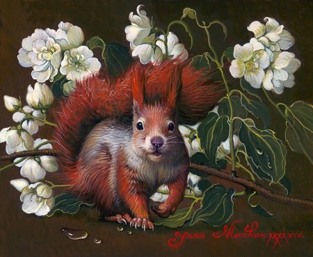 Squirrel with Jasmine - yana movchan, flower, white, animal, red, art, squirrel, veverita, jasmine, painting, pictura