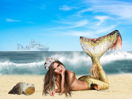 mermaid - mermaid, seashell, ship, sea, sandy beach
