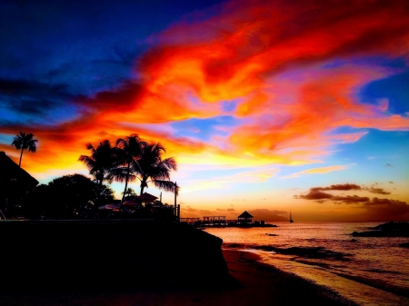 Seychelles Sunset - sea, palms, beach, colors, island, sky, clouds