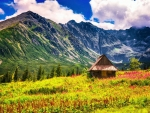 Tatra Mountains near Zakopane, Poland