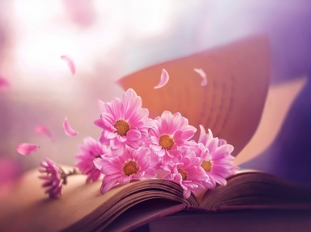 ♥ - flowers, book, soft, pink
