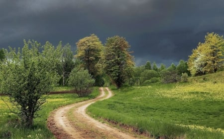 Before Spring Rain - storm, trees, road, Latvia, spring, meadow
