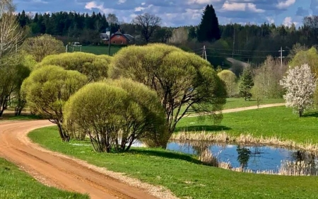 Spring in Latvia - pond, grass, Latvia, path, pring, road, trees, landscape, spring