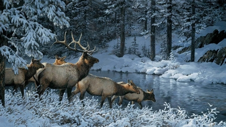 Deers in winter by Persis Clayton Weirs - art, cerb, persis clayton weirs, caprioara, deer, iarna, winter, picture, water, painting, white, frozen, blue