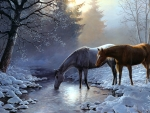 Horses in winter by Persis Clayton Weirs