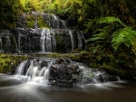 Purakaunui Falls, New Zealand