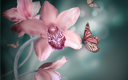 Butterflies on orchids - backgrounds, beautiful, butterflies, abstract, pretty, teal, softness, orchids, fantasy, gentle, flowers, pink
