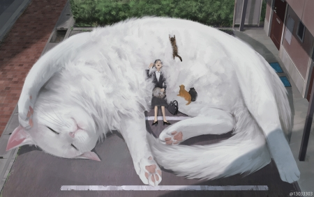 :) - art, sleep, girl, anime, manga, arizuka, cat, white