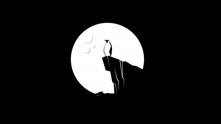 Moonlight - penguin, black, white, minimalistic, night, luna, silhouette, moon, bird, pasari, vector