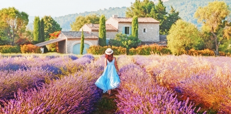 Lavender in Provence - art, Provence, houses, France, beautiful, lavender, scent, woman, girl, village, peaceful, flowers, lady, field