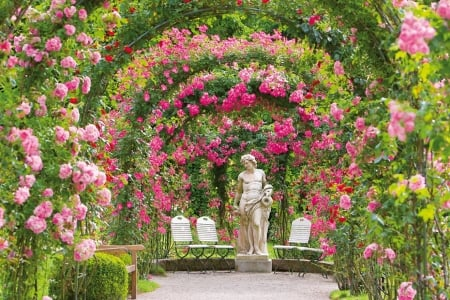 Rose Garden in Baden-Baden, Germany - rosebows, flowers, roses, sculpture
