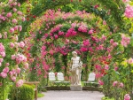 Rose Garden in Baden-Baden, Germany