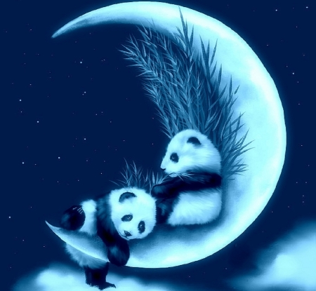 ♥ - moon, nest, luna, cub, bear, night, luminos, panda, cute, fantasy