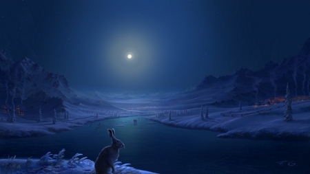 Winter moonlight - world, frumusete, rabbit, luminos, luna, iepuras, iarna, lake, winter, fantasy, water, moon, bunny, white, night, blue, iepure