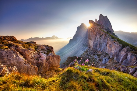 View on Seceda peak - view, Italy, sunset, beautiful, sky, mountain, Europe, Tyrol, rays, peak, wildflowers, sunrise, rocks, Alps, sun, Trentino, dolomites, amazing, south