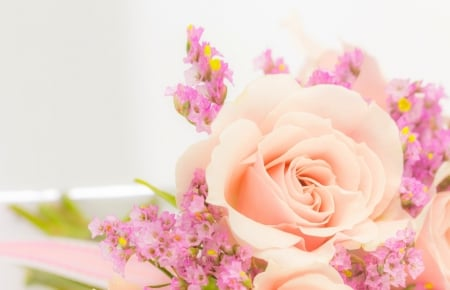 Tenderness - flowers, Pink, nature, roses
