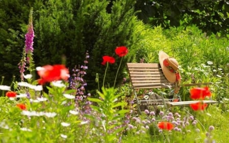 Summer Garden - nature, sun hat, sunlight, flowers, bench, trees